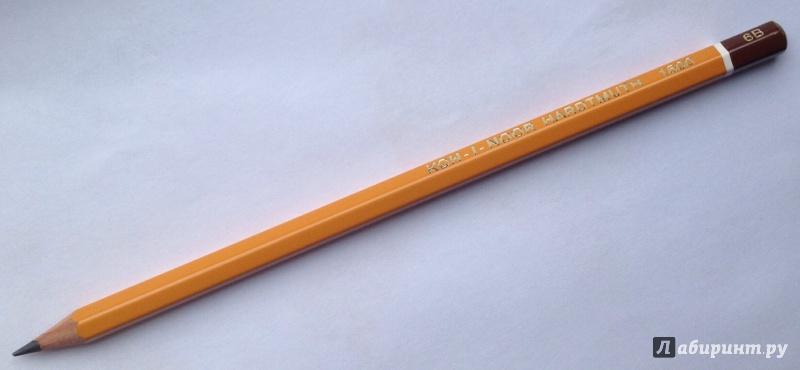 ����������� 1 �� 5 ��� �������� �������������� (1500/6�) | �������� - ��������. ��������: arawacus