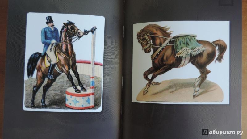 Старинные открытки с лошадьми 58