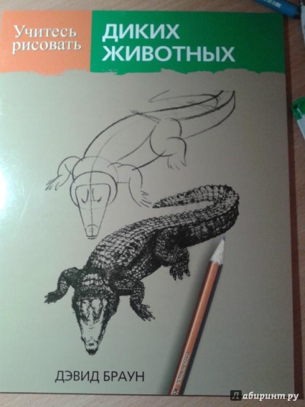 Книги как надо рисовать