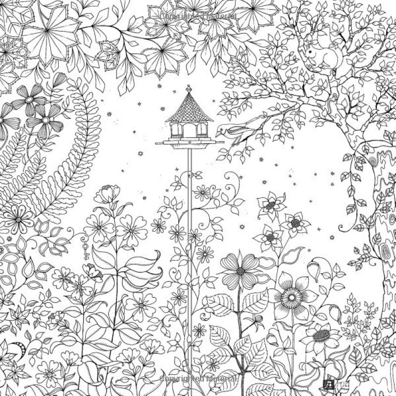 Купить раскраску антистресс таинственный сад