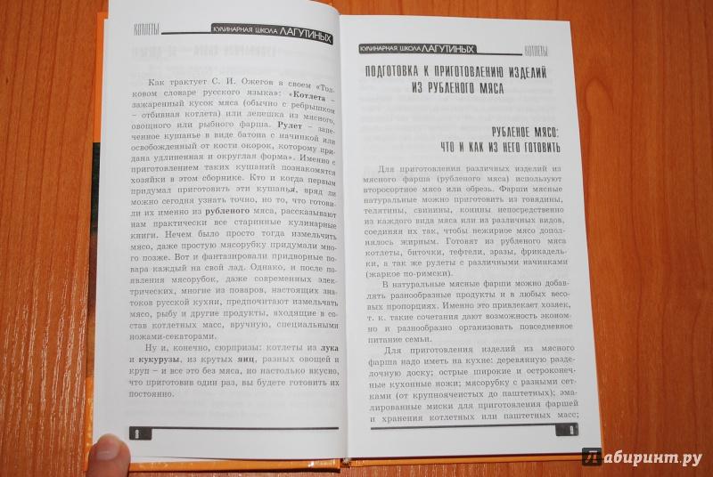 Иллюстрация 1 из 46 для Котлеты: Сборник кулинарных рецептов - Лагутина, Лагутина | Лабиринт - книги. Источник: Нади