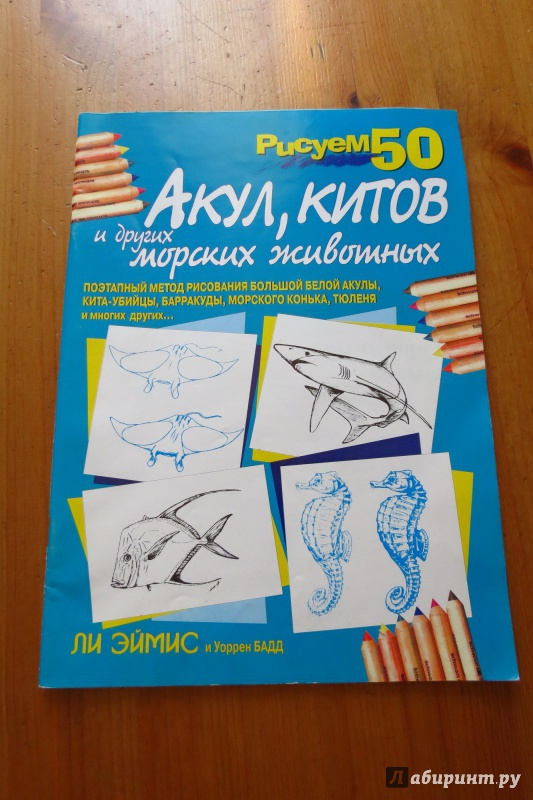 Иллюстрация 1 из 18 для Рисуем 50 акул, китов и других морских животных - Эймис, Бадд | Лабиринт - книги. Источник: Жар птица