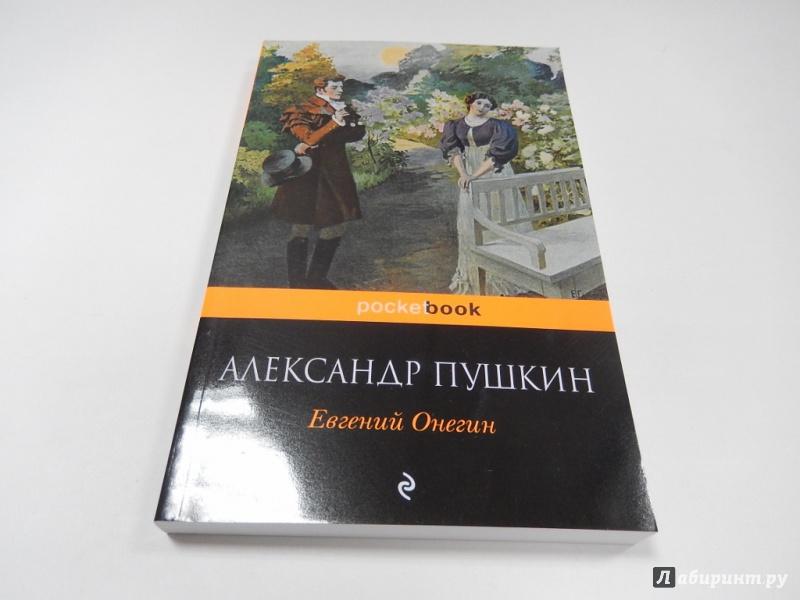Иллюстрация 1 из 17 для Евгений Онегин - Александр Пушкин   Лабиринт - книги. Источник: dbyyb
