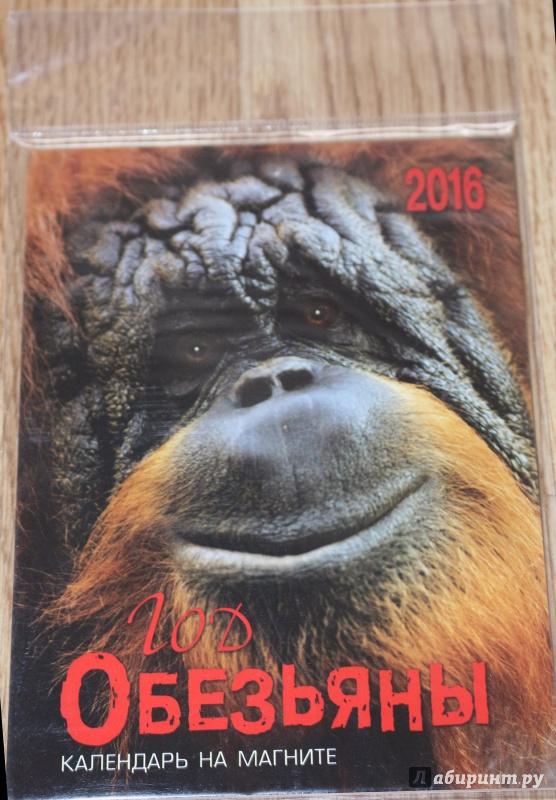 Иллюстрация 1 из 12 для Календарь на магните. 2016 Год обезьяны (прямоугольный) | Лабиринт - сувениры. Источник: Террил