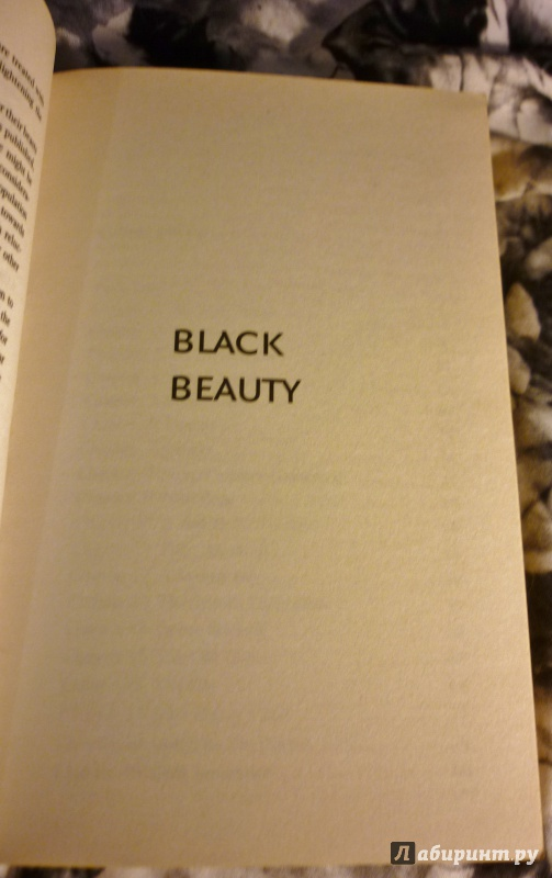 black beauty book essay