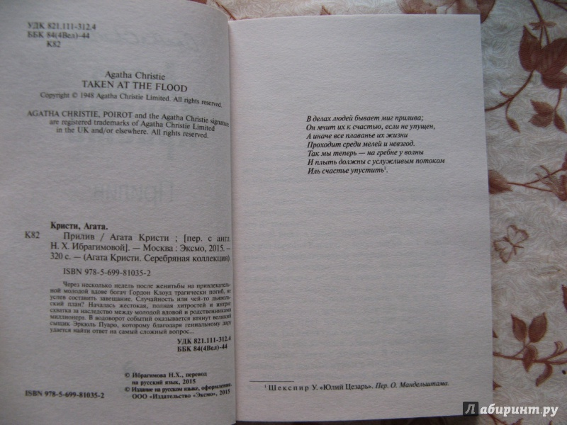 Иллюстрация 1 из 15 для Прилив - Агата Кристи   Лабиринт - книги. Источник: bulochka