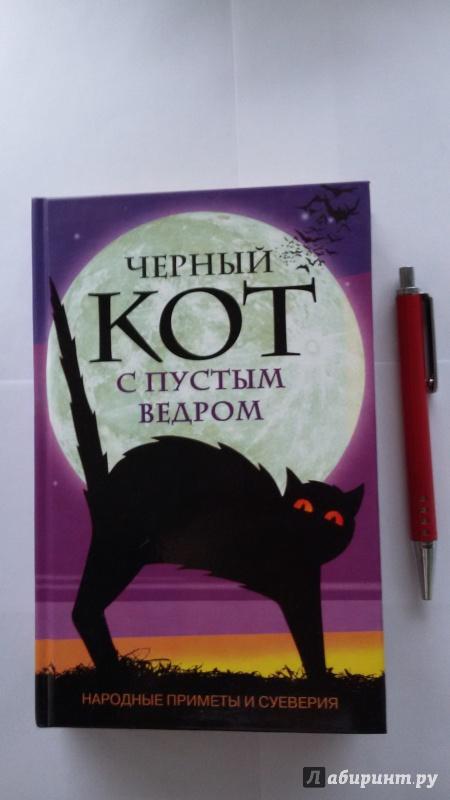 Иллюстрация 1 из 14 для Черный кот с пустым ведром. Народные приметы и суеверия | Лабиринт - книги. Источник: ТанюшаК