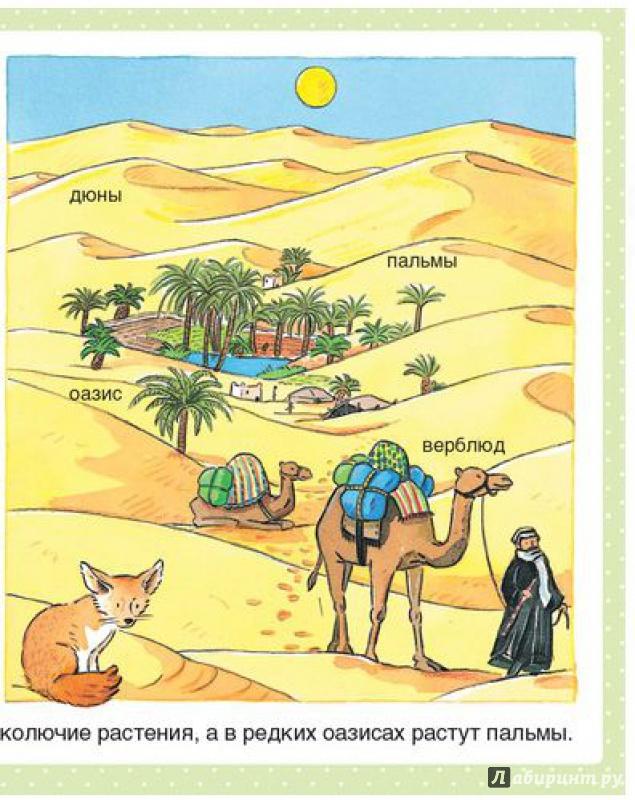 энциклопедия животных для детей знакомые малыши махаон