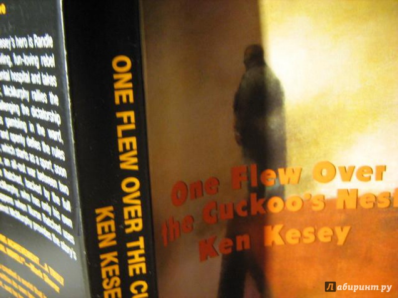 Иллюстрация 1 из 4 для One Flew Over the Cuckoo's Nest - Ken Kesey | Лабиринт - книги. Источник: Finese