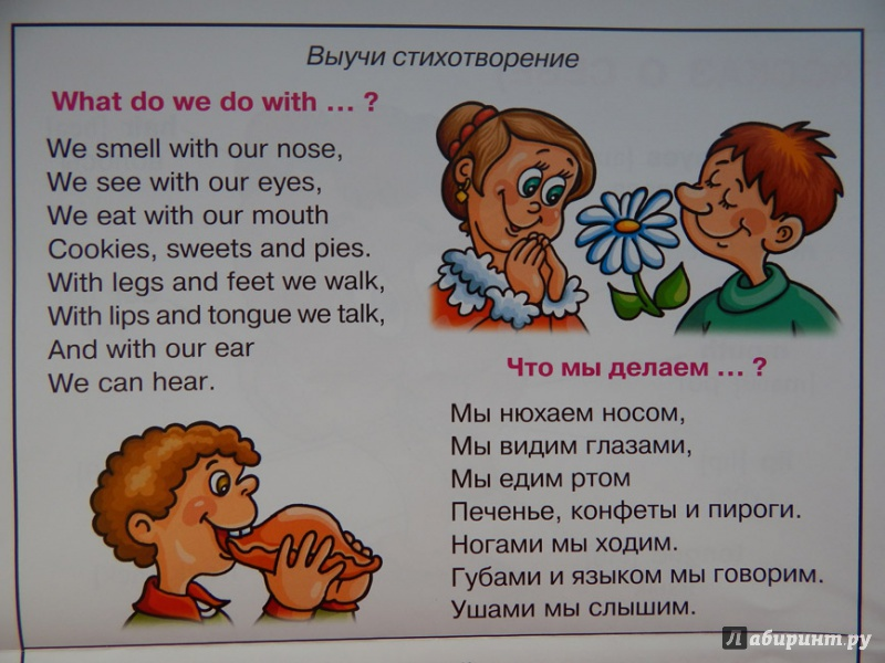 Стих о себе на англ языке
