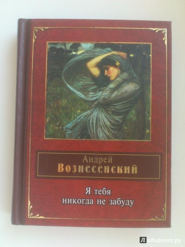 Иллюстрация 1 из 35 для Я тебя никогда не забуду - Андрей Вознесенский   Лабиринт - книги. Источник: Alyona M