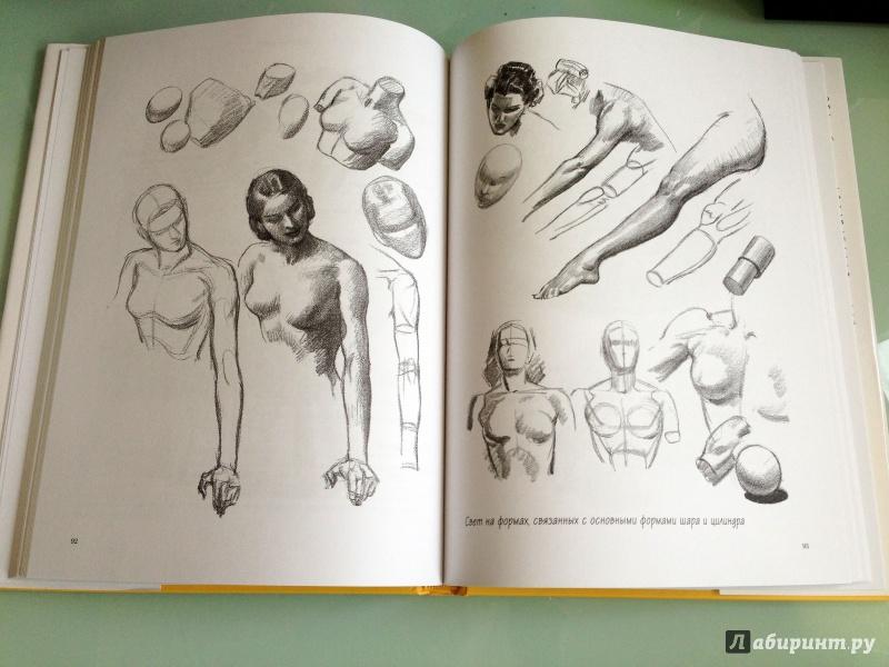 Я хочу рисовать эндрю лумис лабиринт
