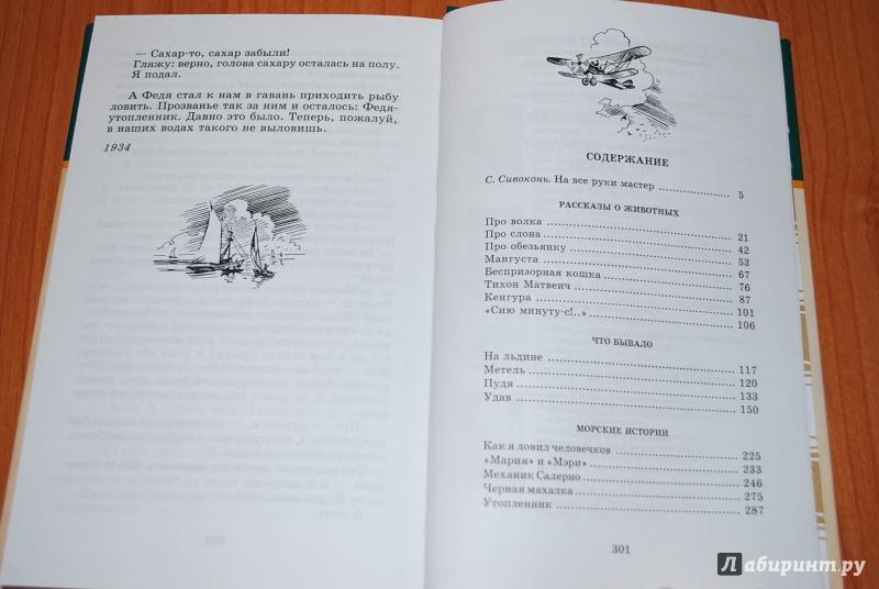 Иллюстрация 1 из 31 для Что бывало. Рассказы - Борис Житков | Лабиринт - книги. Источник: Нади