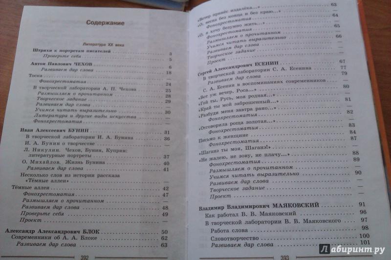 temu-soblyudaem-reshebnik-za-9-klass-po-literatura-avtor-korovina-2013-agabekyan