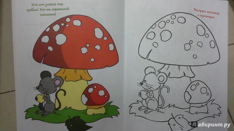 Иллюстрация 1 из 4 для Я люблю рисовать. 4-6 лет. Выпуск 5. Баклажан | Лабиринт - книги. Источник: Теплова  Юлия