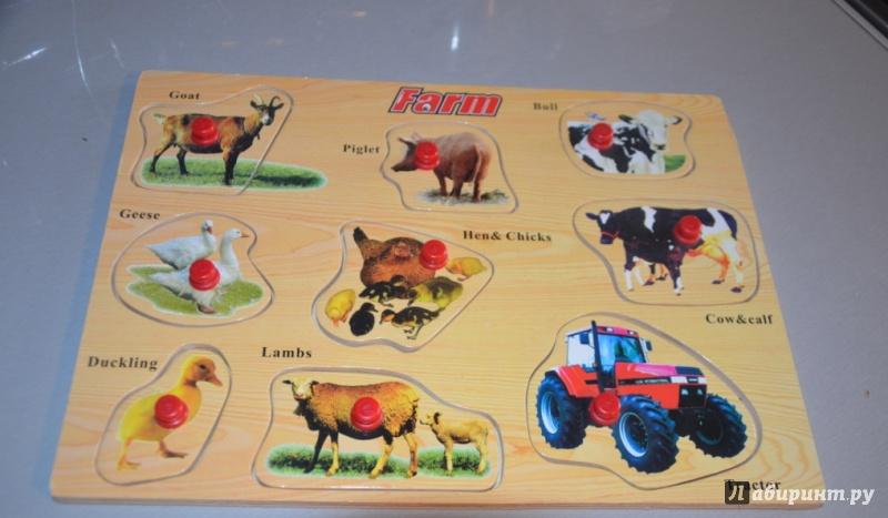 Иллюстрация 1 из 2 для D147 Farm (ферма) | Лабиринт - игрушки. Источник: Лекомцева  Юлия Александровна