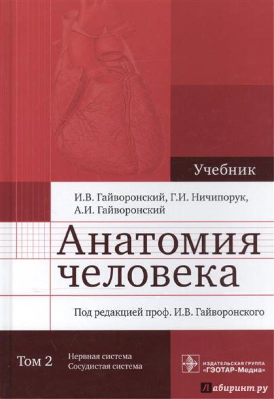 Учебник По Анатомии Гайворонский 2 Том