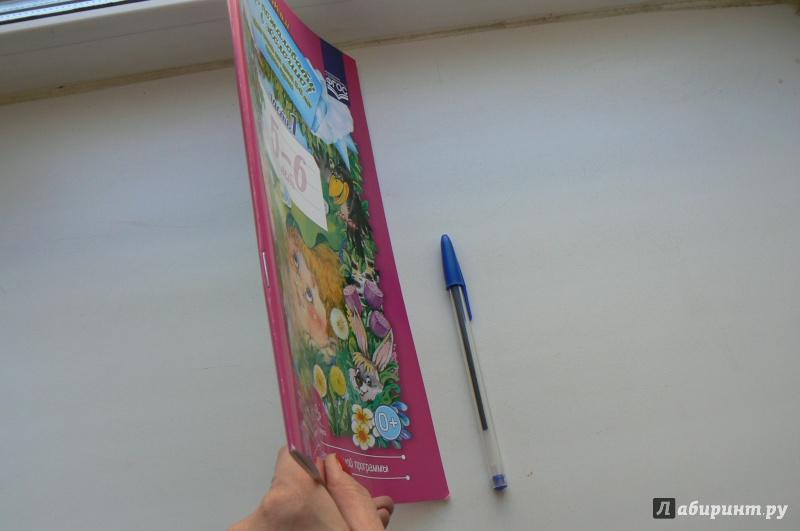 Иллюстрация 1 из 29 для Добро пожаловать в экологию! Рабочая тетрадь для детей 5-6 лет. Старшая группа. Часть 1. ФГОС - Ольга Воронкевич | Лабиринт - книги. Источник: Jebb