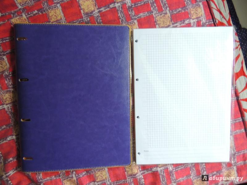 """Иллюстрация 1 из 11 для Тетрадь на кольцах """"Copybook"""" со сменным блоком (200 листов, А4+, фиолетово-желтая) (37937)   Лабиринт - канцтовы. Источник: WasiaShtein"""