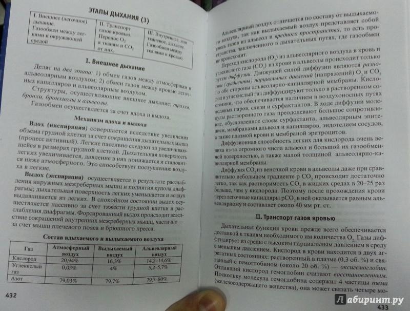 Анатомия в схемах