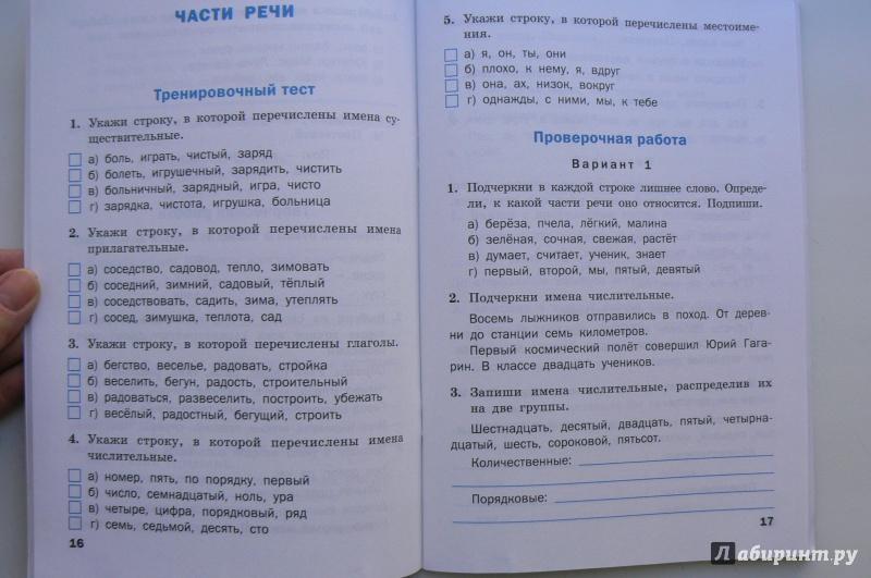 Класс русский язык контрольная работа вводная