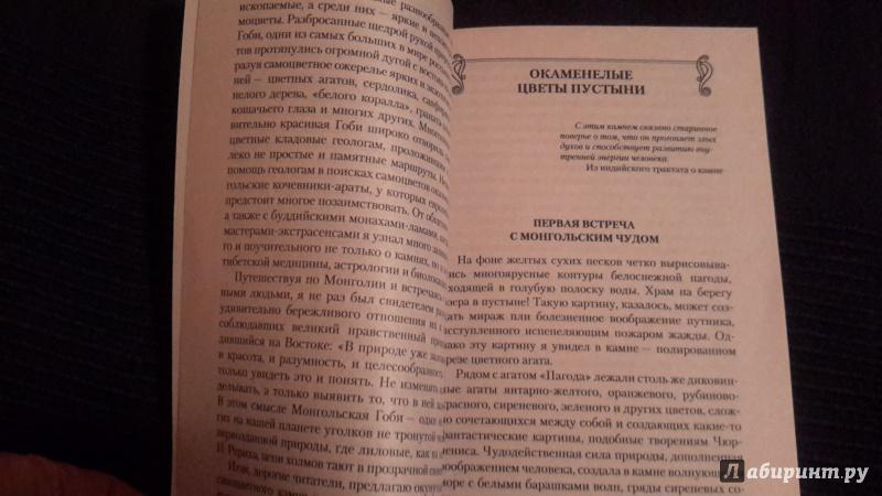 Иллюстрация 1 из 4 для В поисках камня радости - Юрий Липовский | Лабиринт - книги. Источник: orex