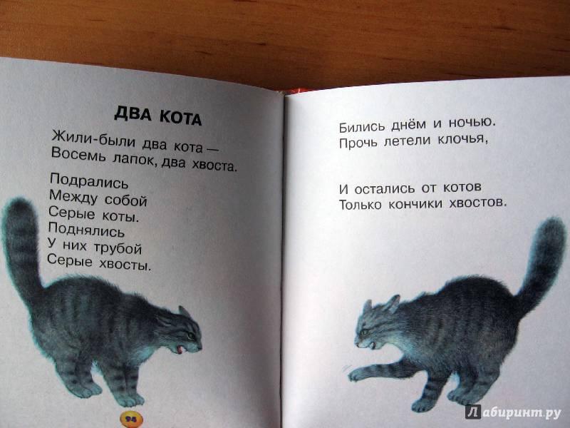 Стих жила была кошка