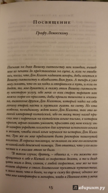 don quixote analysis essay example