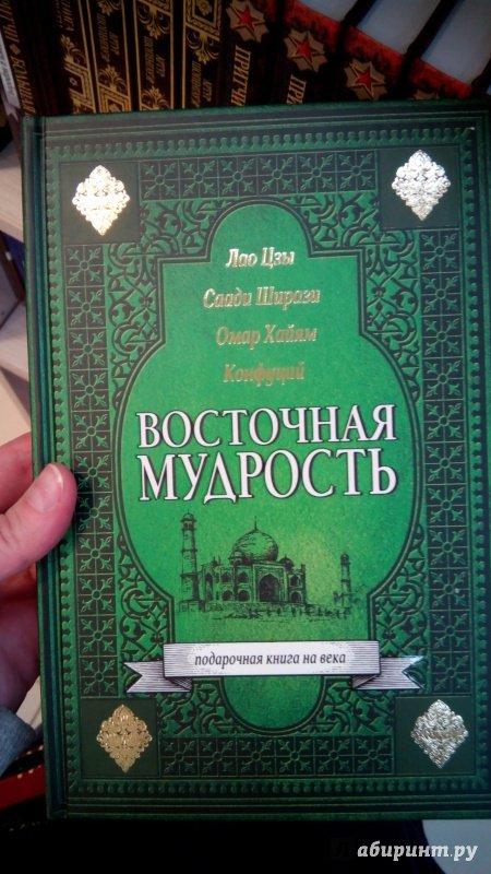 Родник фрактальной мудрости скачать бесплатно книгу