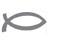 logo_nik