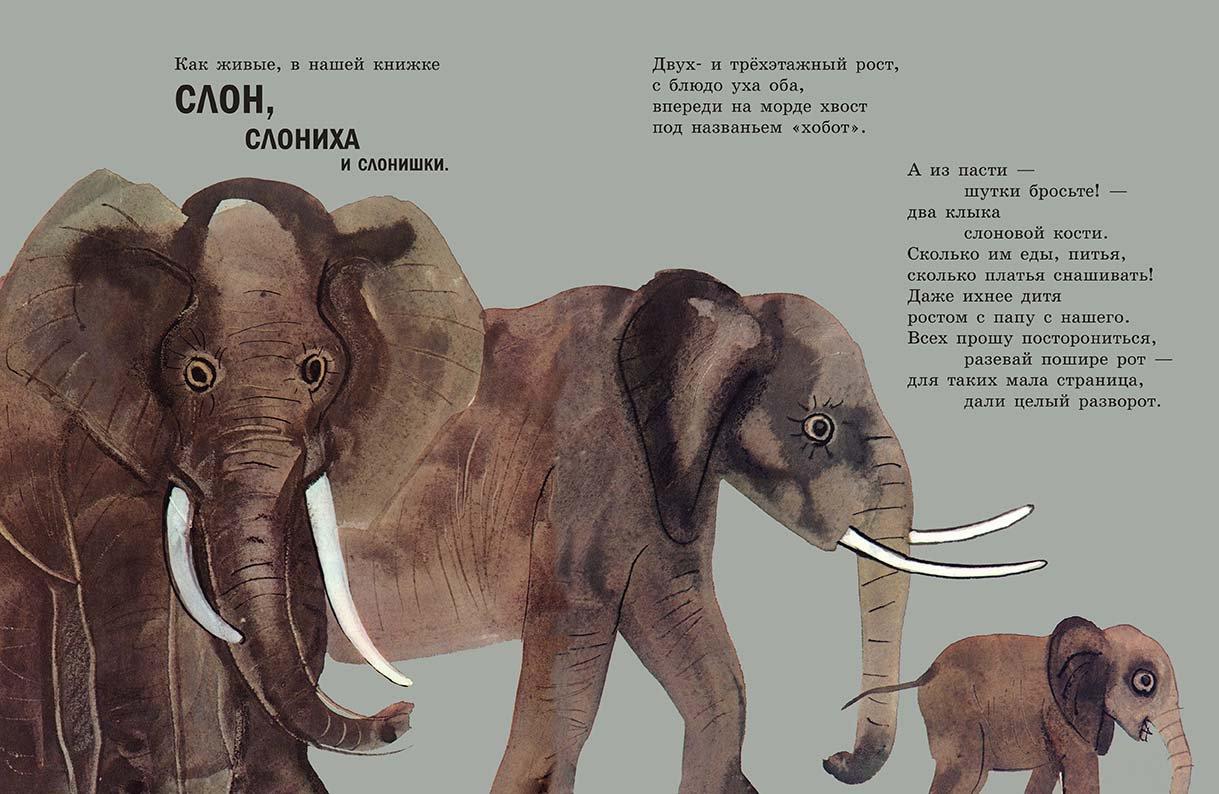 стихи о слонах русских поэтов любви