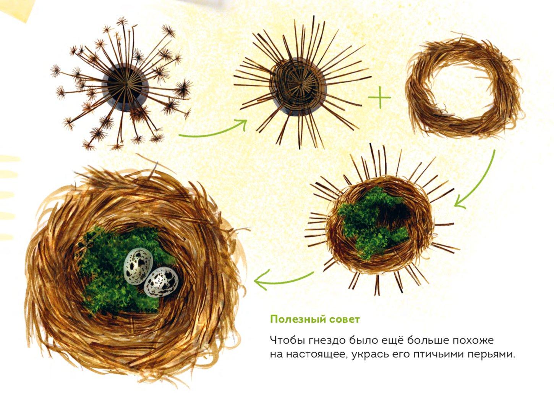 1 1. «Мой гербарий. Цветы и травы», Анна Васильева f4594ca0cd5