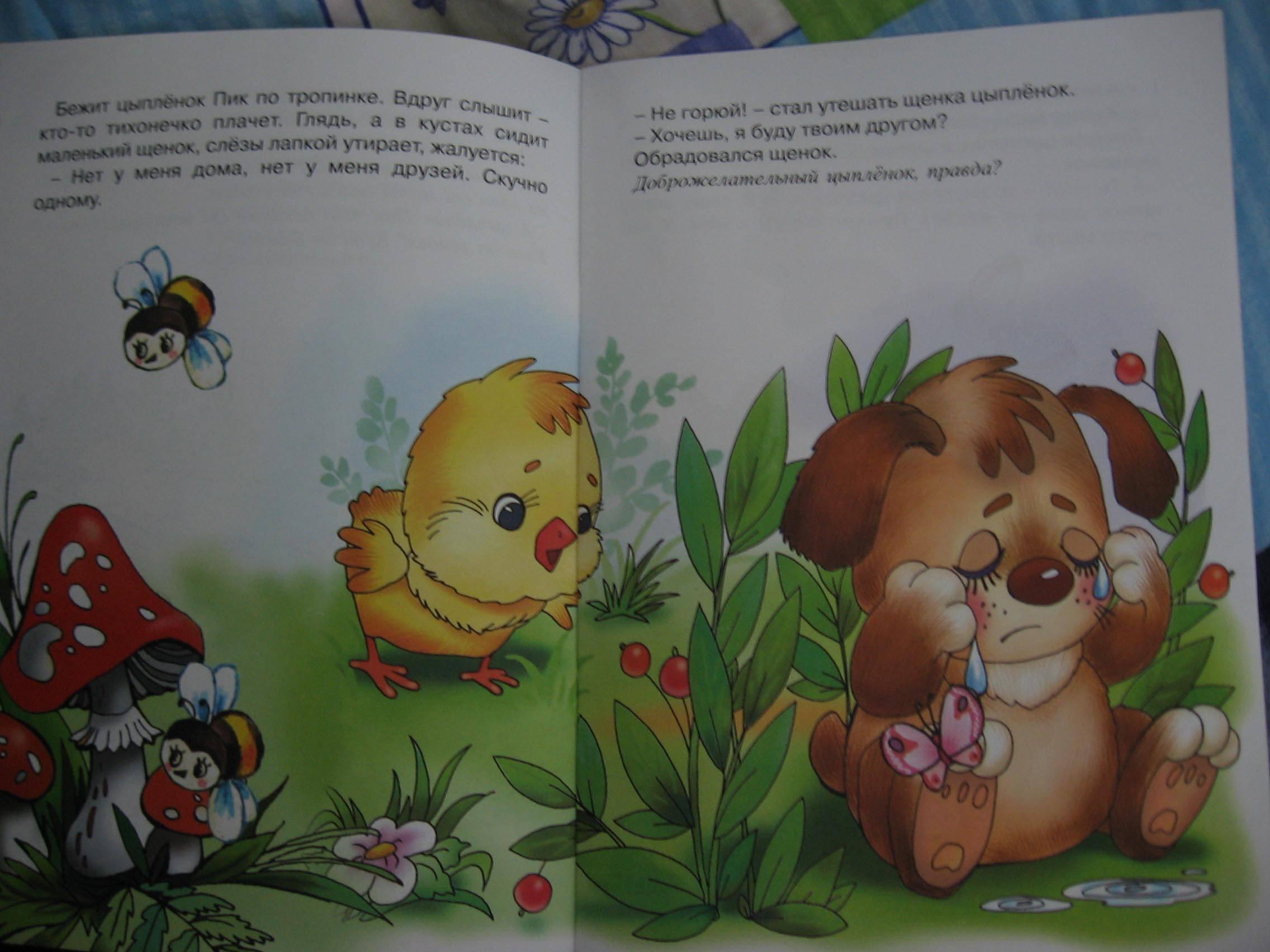 Иллюстрация 1 из 7 для Цыпленок и щенок. - Светлана Теплюк | Лабиринт - книги. Источник: Королева Мария Юрьевна