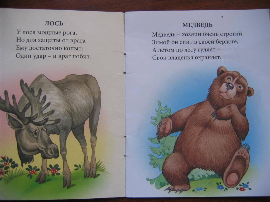 Иллюстрация 1 из 16 для Жители леса - Наталья Томилина | Лабиринт - книги. Источник: Крошка Сью