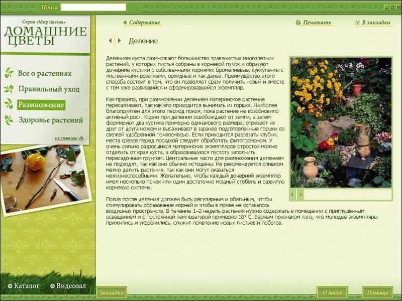Иллюстрация 1 из 3 для Домашние цветы (2CDpc) | Лабиринт - софт. Источник: МЕГ