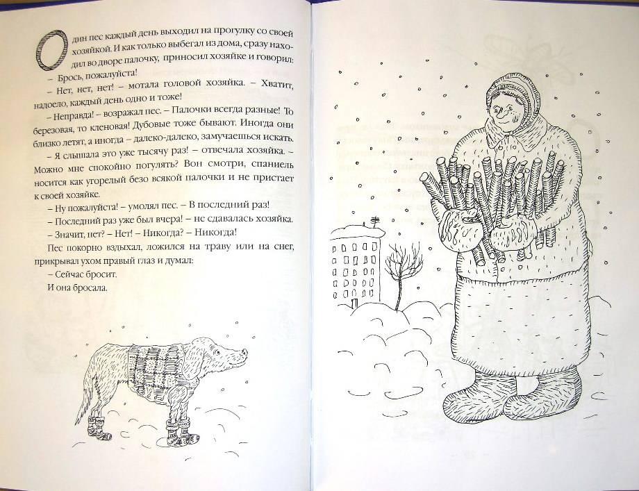 Иллюстрация 1 из 2 для Сказки несовершенного времени - Сергей Седов | Лабиринт - книги. Источник: Шилина  Ольга Александровна