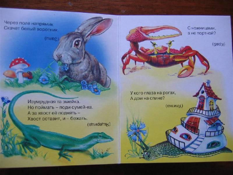 Иллюстрация 1 из 2 для Загадки, стишки для самых маленьких | Лабиринт - книги. Источник: Крошка Сью