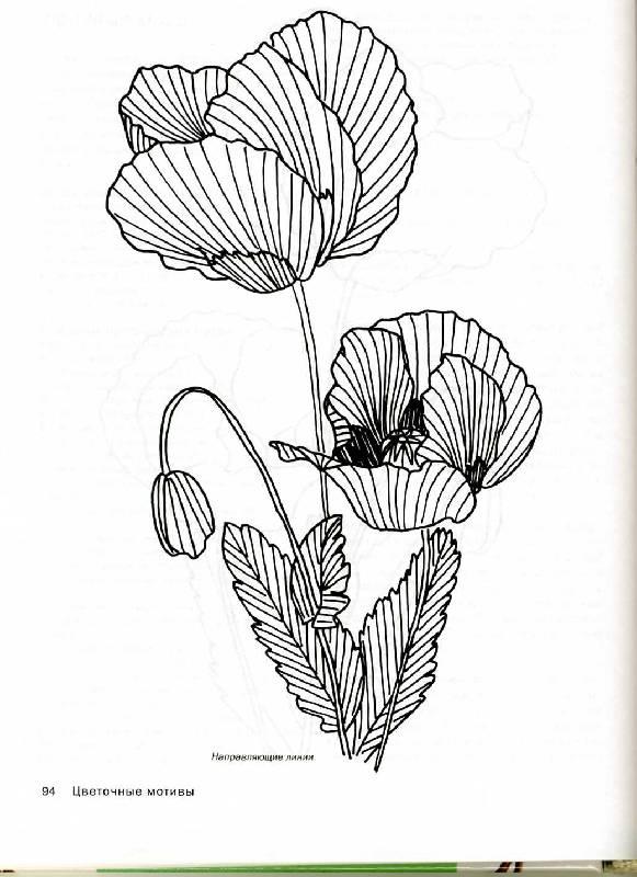Иллюстрация 1 из 20 для Цветочная коллекция. Вышиваем гладью - Бур Триш   Лабиринт - книги. Источник: Panterra