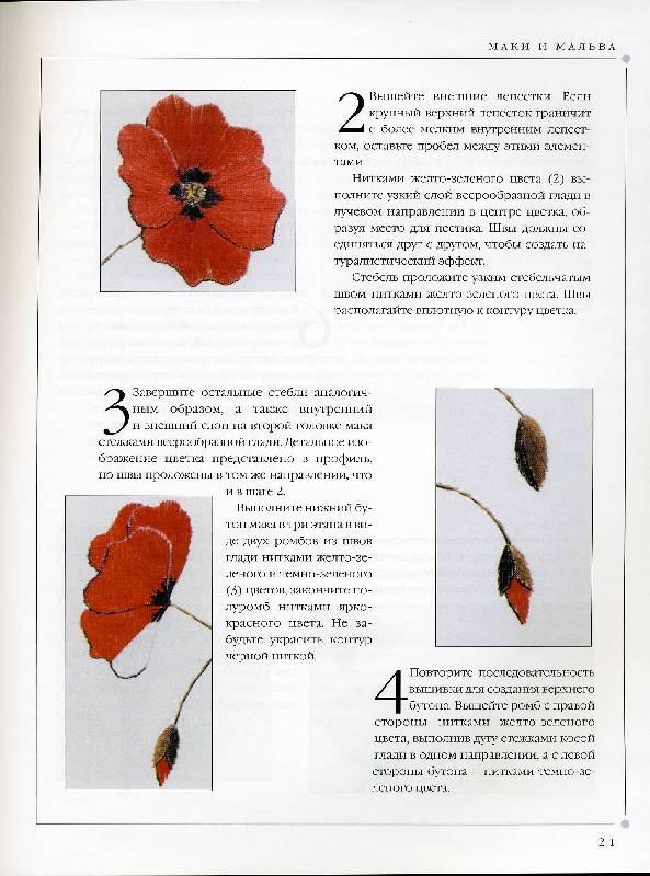 Иллюстрация 3 из 31 для Цветы. Практическое руководство - Хелен Стивенс | Лабиринт - книги. Источник: Panterra