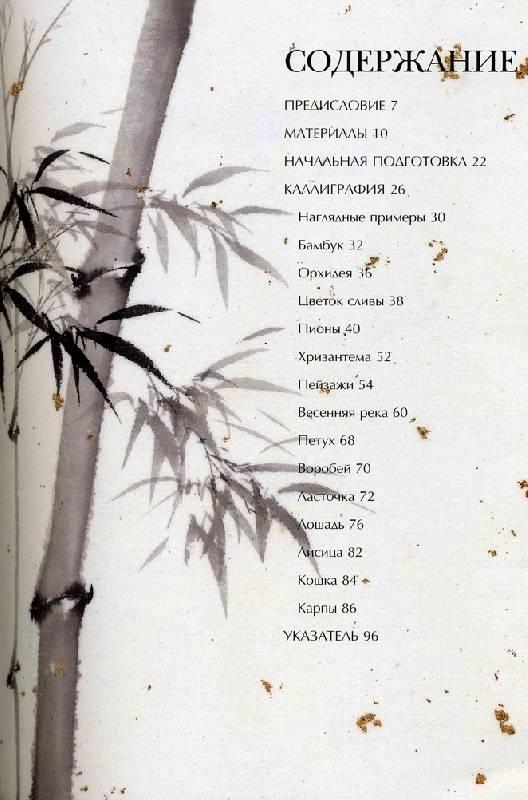 Иллюстрация 1 из 13 для Традиции и современность. Китайская миниатюра - Чень Ян | Лабиринт - книги. Источник: Panterra
