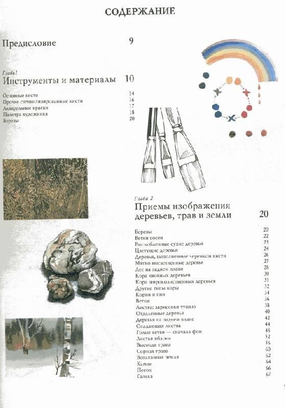 Иллюстрация 1 из 8 для Основы техники изображения природы акварелью - Рейчел Вульф   Лабиринт - книги. Источник: Panterra
