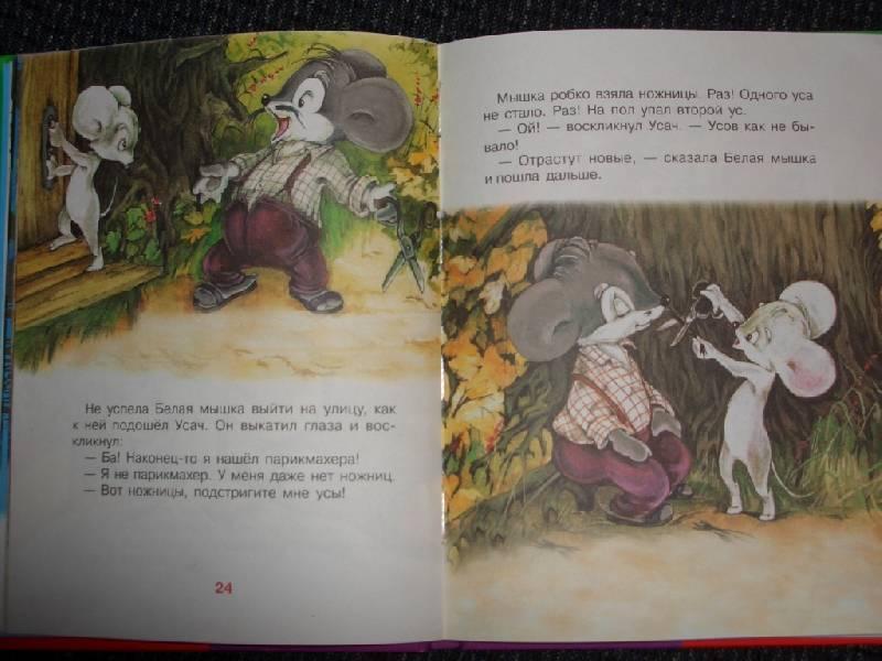 Иллюстрация 1 из 8 для Крошка Енот: Сказки | Лабиринт - книги. Источник: sher