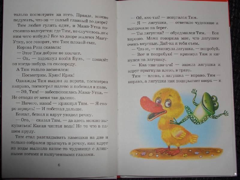 Иллюстрация 1 из 2 для Знаменитый утенок Тим - Энид Блайтон   Лабиринт - книги. Источник: sher