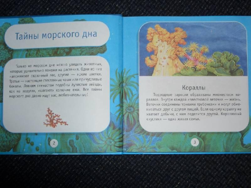 Иллюстрация 1 из 18 для Про моря и океаны. Моя первая книга о животных - Александр Тихонов | Лабиринт - книги. Источник: sher