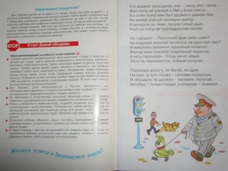 Иллюстрация 1 из 4 для Пираты на большой дороге - Наталья Васюкова | Лабиринт - книги. Источник: sher
