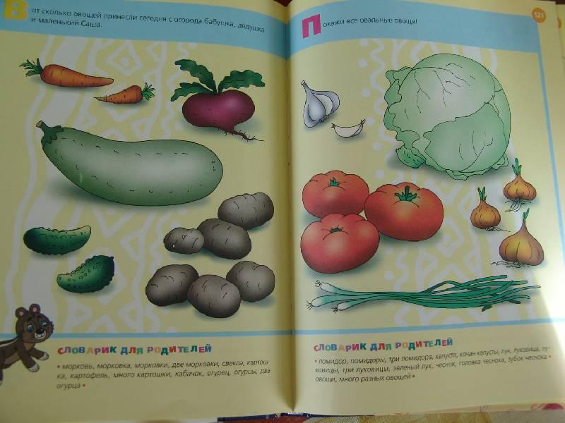 Иллюстрация 1 из 12 для Уроки для самых маленьких (1-3 года) - Лена Данилова   Лабиринт - книги. Источник: Лаванда
