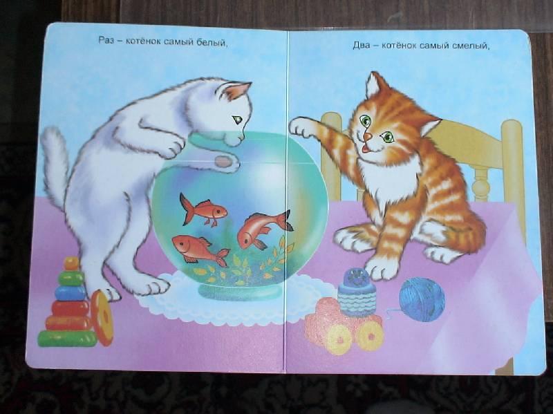 Иллюстрация 1 из 2 для Котята - Сергей Михалков | Лабиринт - книги. Источник: Лаванда