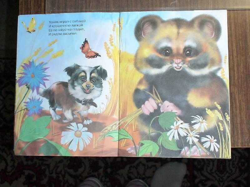 Иллюстрация 1 из 2 для Жила-была собака - Ирина Яворовская | Лабиринт - книги. Источник: Лаванда