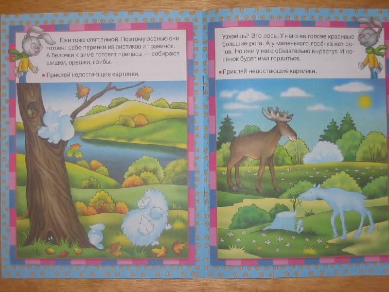 Иллюстрация 1 из 7 для Кто в лесу живет - Е. Шарикова | Лабиринт - книги. Источник: sls7