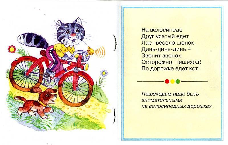 Иллюстрация 1 из 2 для Правила езды на велосипеде - Марина Дружинина | Лабиринт - книги. Источник: РИВА